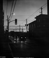 Early morning Parkdale (Uta_kv) Tags: carlzeiss filmcamera tmax100 d76 homedeveloped mediumformat 6x45 expiredkodak film kodak