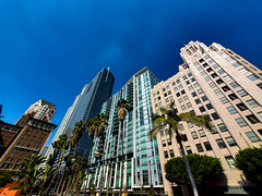 20191014_133217 (foxlense) Tags: la los angeles buildings no people massive vivid blue sky palm tree afternoon business tourist