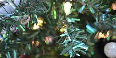 CHRISTMAS TREE: A FIRE HAZARD (canadianeverydaypreparedness) Tags: backhawks medic roll bright vibrant light