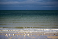 Land sea and sky (Mojinius) Tags: sea beach sand bird water boat ship normandie calvados france seascape landscape