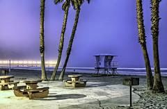 O'Side Beach 19-7-16-19 (rod1691) Tags: california united states nature beauty usa tropical paradise sunrise palm trees outdoor landscape seascape walkabout sunset photography travel beach sand sun pier strand canon40506070d5dii walknshoot