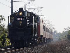 CK124 | 5816次 @通霄=苑裡 (RONGYUAN.LIN) Tags: ck124 railway train tra taiwan locomotive steam