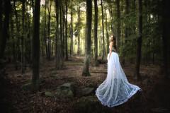 forest fairy (Rita Eberle-Wessner) Tags: forest woods wald bäume trees fairy fee mädchen weiseskleid lady felsen rocks laubwald