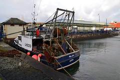 (Zak355) Tags: rothesay bute isleofbute scotland scottish mylads fishingboat rothesayharbour