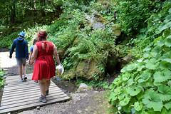 sBs_1907(vac2)_0084-2 (schoolartBYschoolboy) Tags: auvergne puydedome lake forest vulcan family bridge walk back