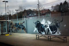 Hal Station 2019-01-03 (saigneurdeguerre) Tags: europe europa belgique belgië belgien belgium belgica ponte antonioponte aponte ponteantonio saigneurdeguerre canon 5d mark iii 3 eos vlaanderen vlaamsbrabant halle hal station sncb nmbs graffiti