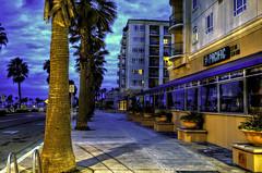 O'Side Sunrise 333-30-12-7-19-70D (rod1691) Tags: california united states nature beauty usa tropical paradise sunrise palm trees outdoor landscape seascape walkabout sunset photography travel beach sand sun pier strand canon40506070d5dii walknshoot