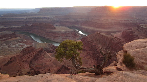 Utah - Dead Horse Point SP -- View of the Colorado River  600 m depth from Dead Horse Point
