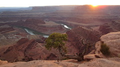 Utah - Dead Horse Point SP -- View of the Colorado River  600 m depth from Dead Horse Point (Traveller-Reini) Tags: canyon canyonland overview aussichtspunkt vantagepoint coloradoplateau coloradoriver river riverexploration fluss colorado utah outdoor sonnenuntergang southernutah usasouthwest wildwest wildnis wildlifesanctuary wilderness sun sunshine sunset sunnyday reise recreation redrockcountry moab sehenswürdigkeit sightseeing adventure abenteuer berge bestplace mountain rocks boulder wasser wasserlauf wasserweg waterway whitewater travel trail hiking wanderpfad wandering wandern usa ufer unitedstatesofamerica america amerika nordamerika northamerica dreamlandscape worldwidelandscapes