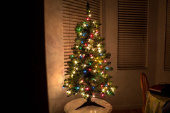 Christmas Tree (jasonhanratty1) Tags: canon eos 600d