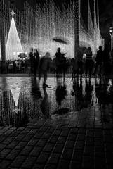 Rainy night (Toy~) Tags: nikon blanco negro black white blackwhite blancoynegro d750 night noche navidad luces luz light lights reflejo charco