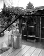 tilt just for fun (salparadise666) Tags: nagaoka 4x5 tessar 135mm ca 1930 compur shutter wide open caffenol rs 20min large format film analogue monochrome bw black white tilt extreme