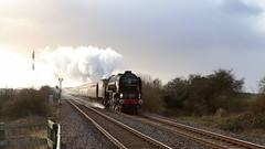 Tornado went to Market (Duck 1966) Tags: tornado 60163 steam locomotive a1