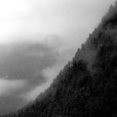 bergab (pierre-vdm (don't fave without comment)) Tags: oberösterreich österreich austria autriche dachstein dachsteingebirge montagne forêt arbre brume brouillard berg berge wald baum nebel mountain forest tree trees fog mist nb sw bw yinandyang yin yang enpentedouce