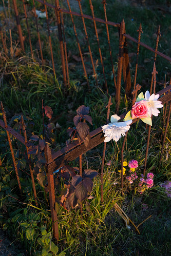 Fake flowers on a rusty fence surounding an old grave