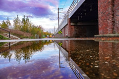 Down beside the the overground (Paul wrights reserved) Tags: reflection reflections reflectionphotography train traintrack skyscape sky texture manmade bridge overground