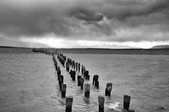 Squall (halifaxlight) Tags: chile patagonia puertonatales clouds rain sea waves mountains snow oldpier stakes senoretchannel bw