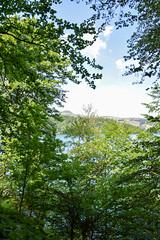 sBs_1907(vac2)_0072-2 (schoolartBYschoolboy) Tags: auvergne puydedome lake forest vulcan