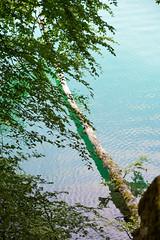 sBs_1907(vac2)_0069-2 (schoolartBYschoolboy) Tags: auvergne puydedome lake forest vulcan