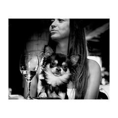 """ Tel Maître ... "" (jcois.) Tags: pentax portrait streetportrait street regard blackwhite bw noirblanc monochrome urbain urban people personnes jcois dog chien streetphotographer rouen portraitderue"