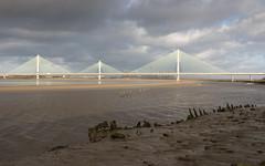 Mersey Gateway bridge 02 dec 19 (Shaun the grime lover) Tags: mersey autumn bridge river cablestayed gateway wigg island runcorn cheshire fiddlers ferry