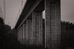 Concrete RailRoad (felix200SX) Tags: bw blackwhite conrete railroadbridge pylons train bridge sky trees high tall outside canon 70d sigma70200mmf28dgoshsm