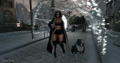 ❤ (cometa shadow blog) Tags: aphorism doux rezzroom winter cynful blog fashion post moda snow catwa maitreya sl secondlife ncore dog style