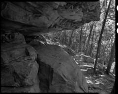 Pilot Mountain State Park (greyhills2) Tags: chamonix scottstallings charlotte nc 45n1 nikkor 9045 pilotmountainstatepark ilford fp4 ilfotecddx largeformat 4x5 screen1045ai pinnacle northcarolina usa