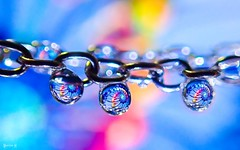 #Chain - 7826 (✵ΨᗩSᗰIᘉᗴ HᗴᘉS✵84 000 000 THXS) Tags: chain chaîne macro macromondays drop droplet silver color colour bokeh vivid water belgium europa aaa namuroise look photo friends be yasminehens interest eu fr party greatphotographers lanamuroise flickering challenge blue pink yellow olympus tg5