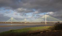 Mersey Gateway bridge 03 dec 19 (Shaun the grime lover) Tags: mersey autumn bridge river cablestayed gateway wigg island runcorn cheshire fiddlers ferry