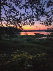 Sunset (Bhuvan N) Tags: nature naturephotography kukkarahallilake lake sunset evening india travel outing outside outdoors karnataka mysore mysuru sunlight orange ciel cielo colours colors sky trees natura naturaleza natur