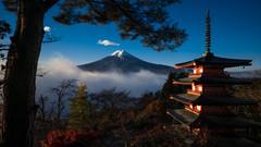Mt. Fuji (Bastian.K) Tags: zeiss loxia loxia2128 loxia2821 japan fuji mount mt berg fujisan pagode pagoda tree baum schnee snow wolke cloud clouds cloudy