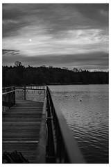 Mond über dem Steg (maximilianrentschler) Tags: footbrigde moon mond lake see herbst autunm unschärfe blur blackandwhite landscape landschaft baden salem stefansfeld sony alpha6300 sigma sigma30mm14 steg blackwhite black white schwarzweis