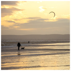 Bexhill Beach (Mandy Willard) Tags: 365 0812 beach bexhill dog walker kite surfer sunset