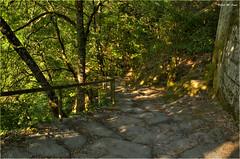 Viejos caminos - LLegando al monasterio de Rocas (Orense) (Jose Manuel Cano) Tags: rocas orense galicia españa spain nikond5100 monasterio monastery camino way roca rock