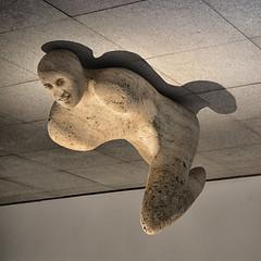 Portrait - Retrato (COLINA PACO) Tags: retrato ritratto portrait photomanipulation fotomanipulación fotomontaje sculpture escultura franciscocolina