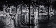 Rainy night in Barcelona (jose luis asensio) Tags: eixample barcelona catalonia spain europe night city street urban car tree rain water