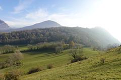 Motte Castrale du Grand Joueret @ Curienne