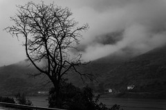 Along the River (Stefan Waldeck) Tags: river riverduoro water reflections sky clouds hillsides houses tree bushes road asphalt fence duorovalley portugal 2019 netzki stefanwaldeck stefan waldeck