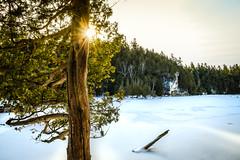 Rockwood_Winter19 (KateJBurt) Tags: rockwood conservation