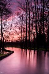 Reflets de Fin de Journée_7652 (darry@darryphotos.com) Tags: paysage landscape nature lumiere pays mellois riviere eau reflet coucherdesoleil sunset