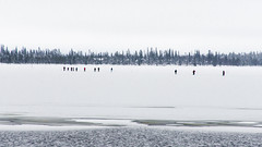 Skiing on an icy lake (ikkasj) Tags: winter ice lapland jerisjärvi muonio nature snow