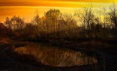 Morgens beim Biotop (Chridage) Tags: morgens morgengrauen morgensonne früh biotop biotope see lake luminar luminar4 teich