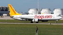 Boeing 737-8GJ(WL) TC-CPR Pegasus (William Musculus) Tags: stuttgart flughafen str edds airport spotting aviation william musculus plane airplane tccpr pegasus boeing 7378gjwl 737800 pc pgt