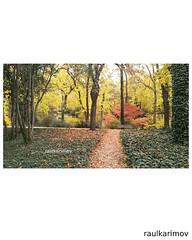 Autumn (Raul Karimov) Tags: autumn otoño paisaje landscapes nature naturaleza naturephotography landscapephotography