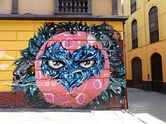 PERUVIAN GRAFFITI (paramonguino) Tags: p1650624jpg1 lima perú graffiti streetart