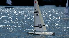 Valenciennes RC Laser (BILLARD Jean-Claude) Tags: sail voile modelisme bateau boat vrc regate valenciennes etang du vignoble 2019 rc laser championnat des nations