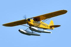 1AA_7480 (chris murkin) Tags: 1946 piper j3c65 nikon d850 n98278 cub cn18453 aircraft airshow airshows air american airventure aeroplane eaa flying plane prop photo propblur seaplane oshkosh