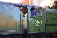 IMG_9223 (LincolnWarrior) Tags: steamtrain train transport steam tornado 60163 railway