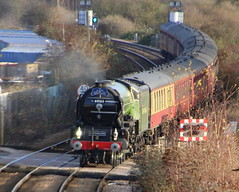 IMG_9198 (LincolnWarrior) Tags: steamtrain train transport steam tornado 60163 railway
